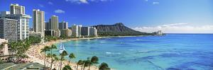 Palm Trees on the Beach, Diamond Head, Waikiki Beach, Oahu, Honolulu, Hawaii, USA
