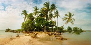 Palm Trees on the Beach in Morro De Sao Paulo, Tinhare, Cairu, Bahia, Brazil
