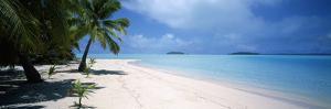 Palm Trees on the Beach, Tapuaetai, Aitutaki, Cook Islands