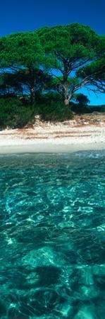 Palombaggia Beach from the Water, Corsica, France