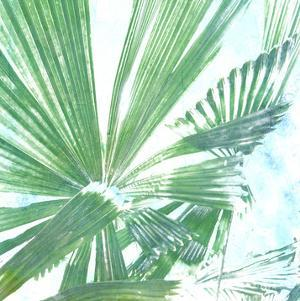 Emerald Palms II by Pam Ilosky