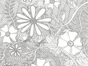 Wild Daisys Less by Pam Varacek