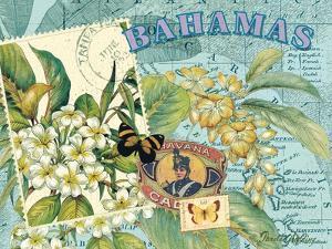 Bahamas by Pamela Gladding