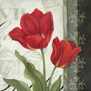 Etude en Rouge II by Pamela Gladding