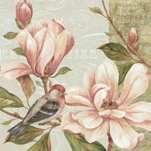 Magnolia Collage II by Pamela Gladding