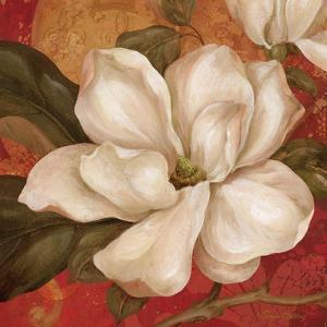 Magnolia on Red II by Pamela Gladding