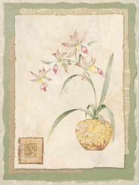 Orchid II by Pamela Gladding