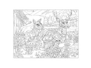 Deer Me by Pamela J. Smart
