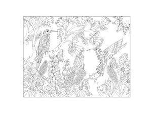 Dianas Hummingbirds by Pamela J. Smart