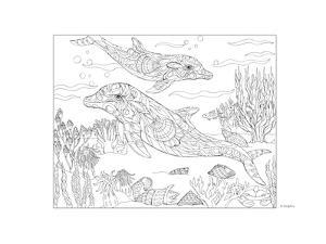 Dolphin by Pamela J. Smart