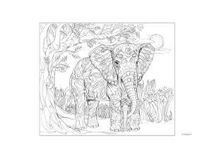 Elephant by Pamela J. Smart