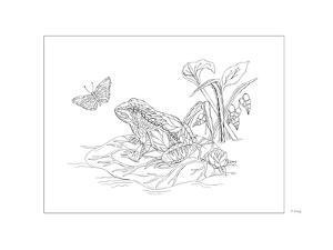 Frog by Pamela J. Smart