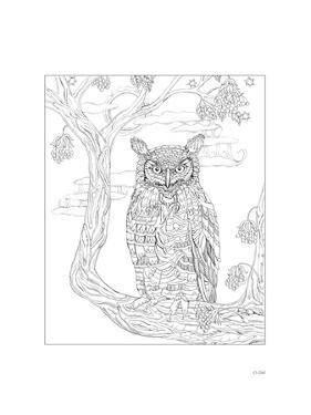 Owl by Pamela J. Smart