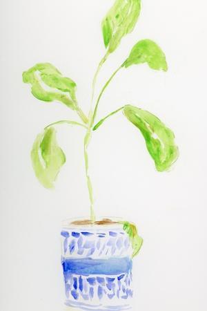Blue and White Botanical II