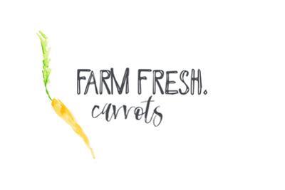 Farm Fresh Carrots II by Pamela J. Wingard