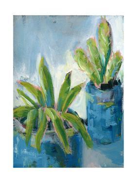 Southwestern Garden II by Pamela J. Wingard