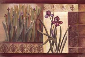 Iris Fantasy by Pamela Luer