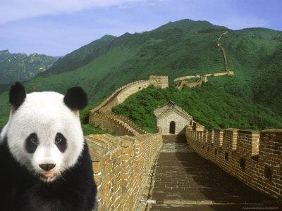 https://imgc.allpostersimages.com/img/posters/panda-at-the-great-wall-of-china_u-L-P58E500.jpg?p=0