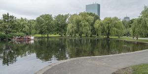 City public garden, Boston, Massachusetts, USA by Panoramic Images
