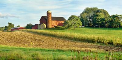 Field with silo and barn in the background, Ohio, USA by Panoramic Images