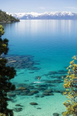 Man paddle boarding in a lake, Lake Tahoe, California, USA by Panoramic Images