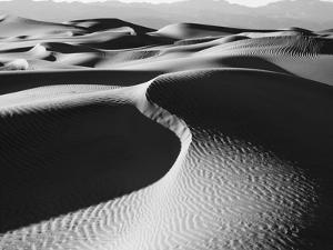 Sand dunes in a desert, Mesquite Flat Dunes, Death Valley National Park, California, USA by Panoramic Images