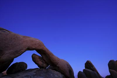 Scenic view of rock formations, Joshua Tree National Park, California, USA by Panoramic Images