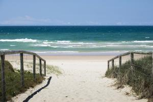 Scenic view of the beach, Coral Sea, Surfers Paradise, Queensland, Australia by Panoramic Images