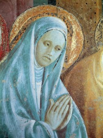 Head of Saint Anne from the Presentation of Mary in the Temple, 1433-34 (Fresco) (Detail)