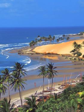 Beach in Fortaleza, Ceara, Brazil, South America by Papadopoulos Sakis
