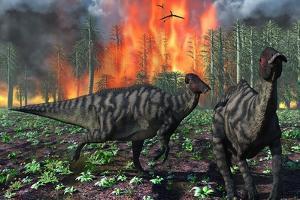 Parasaurolophus Duckbill Dinosaurs Fleeing a Deadly Forest Fire