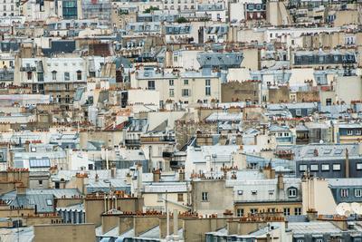https://imgc.allpostersimages.com/img/posters/paris-rooftops-i_u-L-Q11UP7E0.jpg?artPerspective=n