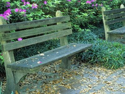 https://imgc.allpostersimages.com/img/posters/park-benches-in-town-square-savannah-georgia-usa_u-L-P42O1X0.jpg?p=0