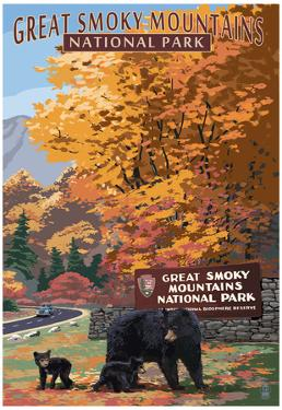 Park Entrance and Bear Family - Great Smoky Mountains National Park, TN