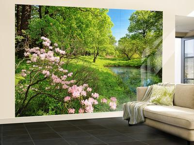 Beautiful Park In The Spring Wall Mural Part 27