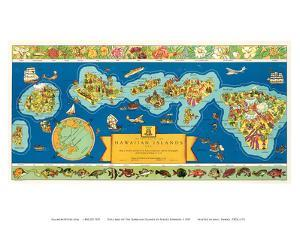 Dole Map of The Hawaiian Islands: description of the history, transportation, industries, geography by Parker Edwards