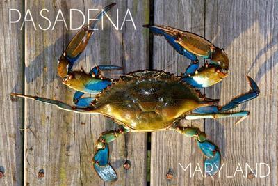 https://imgc.allpostersimages.com/img/posters/pasadena-maryland-blue-crab-on-dock_u-L-Q1GQLJP0.jpg?artPerspective=n