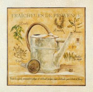 Fraicheurs de Provence by Pascal Cessou