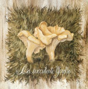 La Succulente Girole by Pascal Cessou