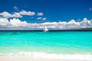 Beach with Sailboat in Ocean by pashapixel
