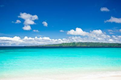 Beach with Turquoise Water and White Sand by pashapixel