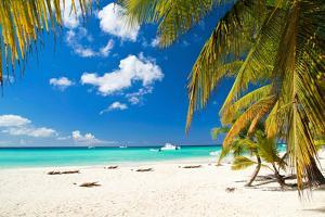 Caribbean Paradise by pashapixel