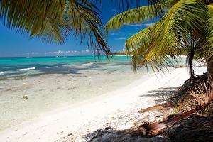 Caribbean Sea Lagoon by pashapixel