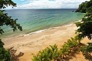 Samana Resort Beach by pashapixel