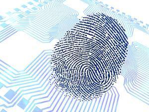 Biometric Fingerprint Scan, Artwork by PASIEKA