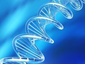 DNA Molecule, Artwork by PASIEKA