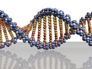 DNA Molecule, Computer Artwork by PASIEKA
