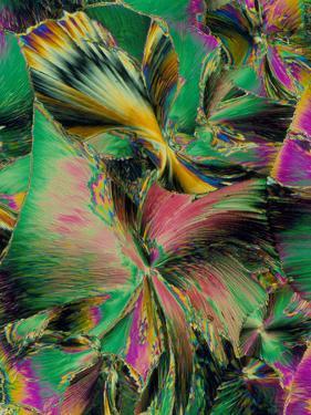 Folic Acid Crystals by PASIEKA