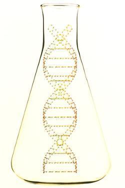 Genetic Research by PASIEKA