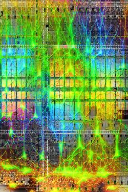 Neural Network by PASIEKA